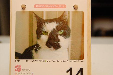 20110114sasuke2.jpg