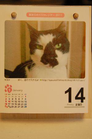 20110114sasuke3.jpg