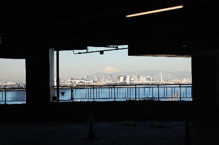 20110131fuji.jpg