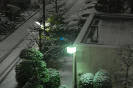 20110214yuki.jpg