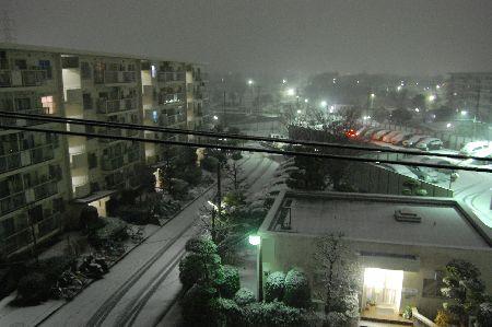 20110214yuki2.jpg