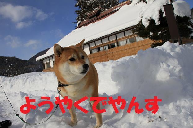 21 12月20日福島 117