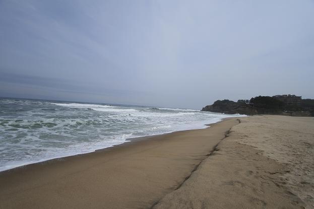 茨城県 海浜公園 160
