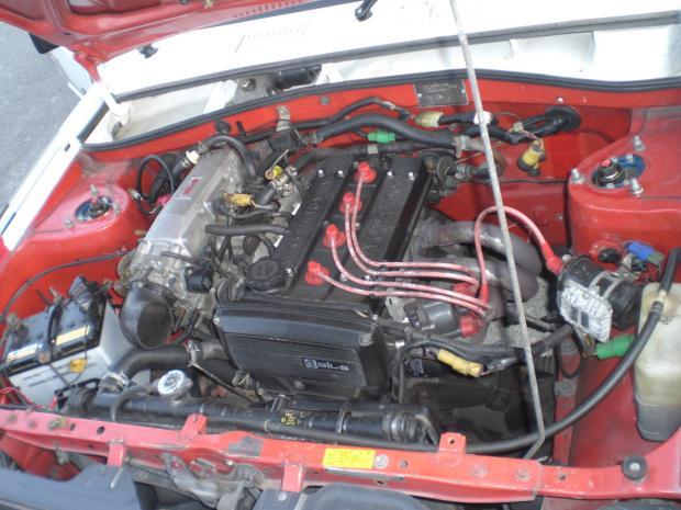 CIMG4663_convert_20100529183826.jpg