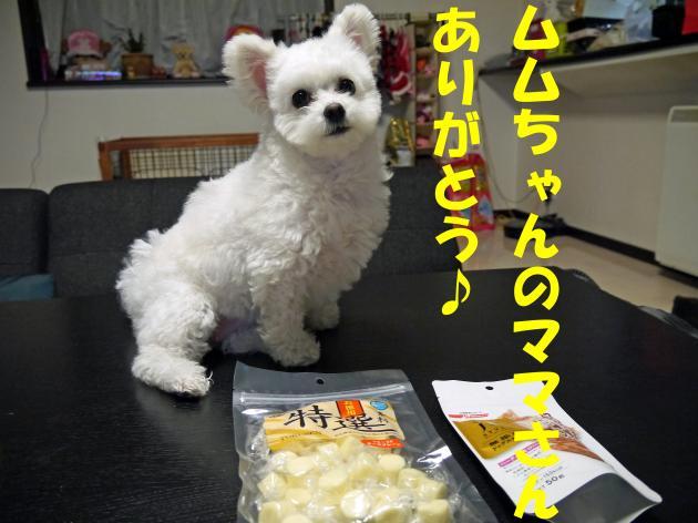 P1040859_convert_20130227004015.jpg