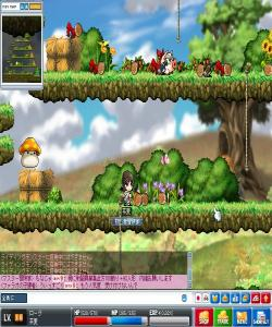 Maple100304_222322_convert_20100304232934.jpg
