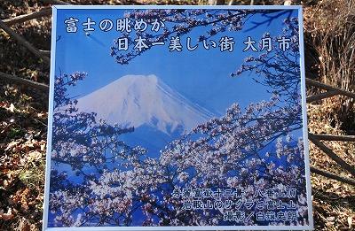 DSC_6259_20130219111411.jpg