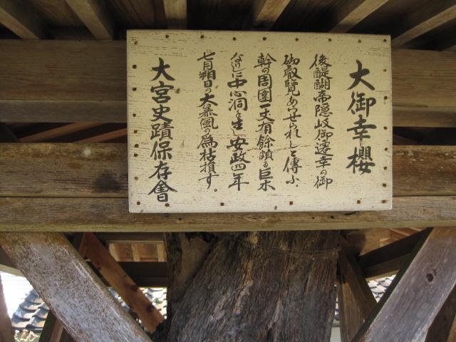 大宮神社 5