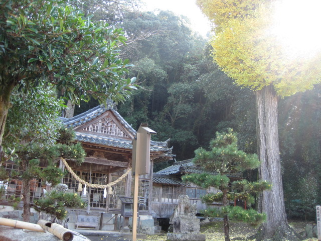 大宮神社 9