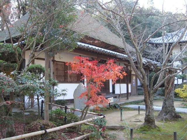 円通寺 23