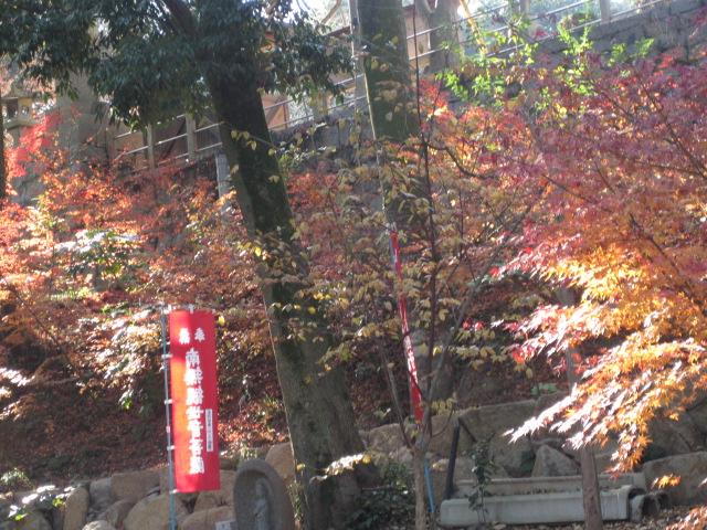 円通寺 31