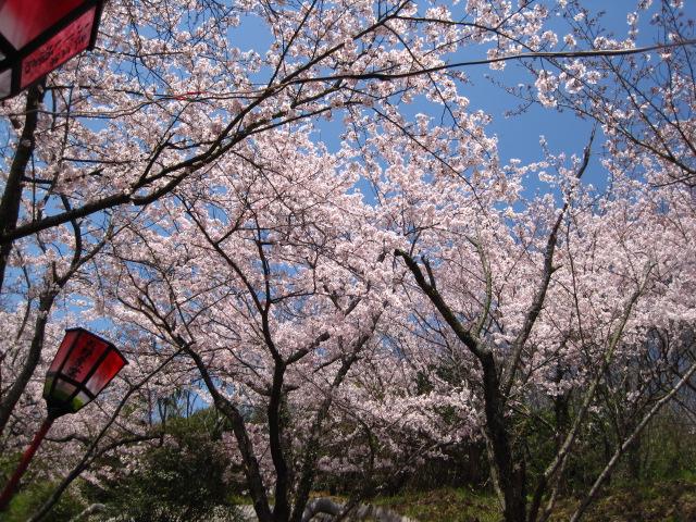 井戸公園 3