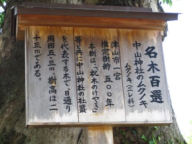 中山神社 3