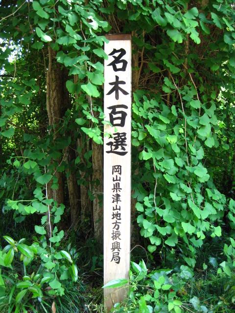 中山神社 29