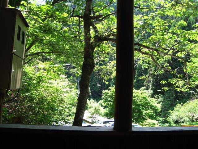 横野滝 7
