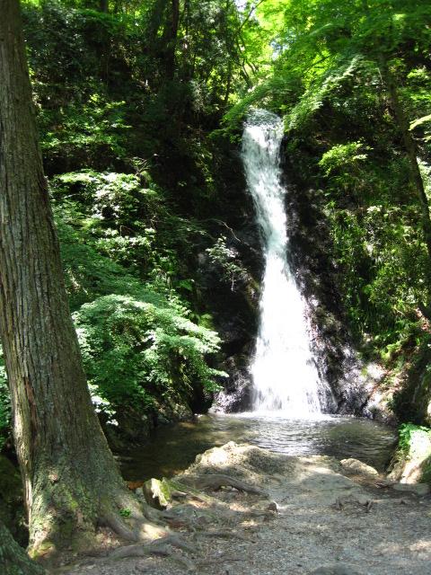 横野滝 14