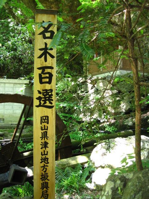横野滝 22