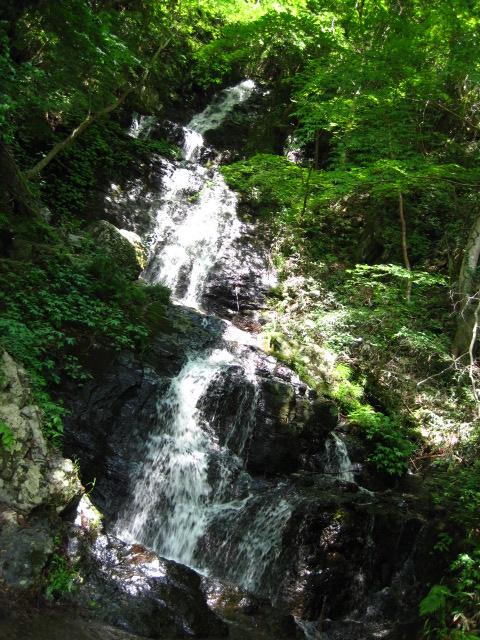 横野滝28