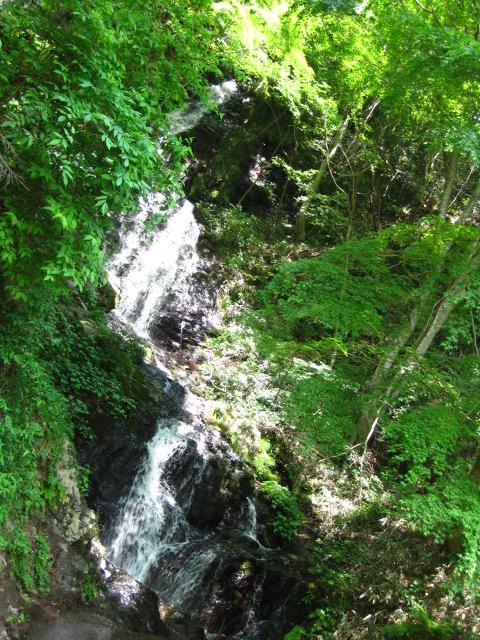 横野滝 29