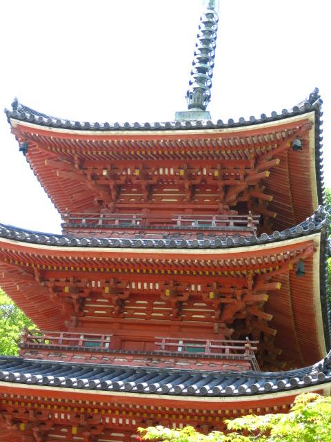 宝福寺 29