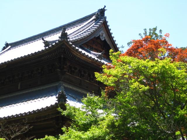 宝福寺 48
