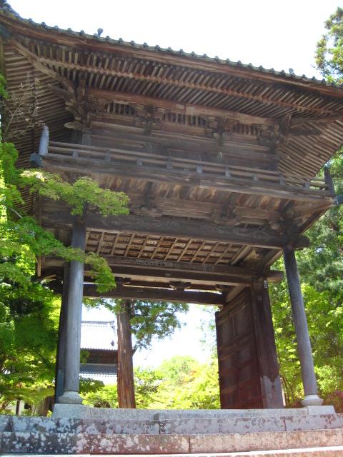 宝福寺 54
