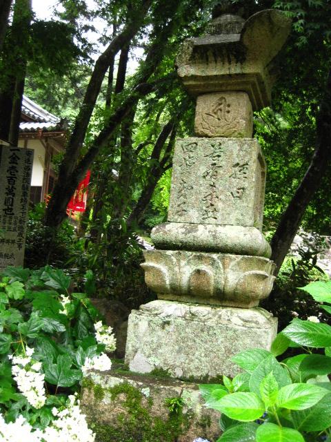大滝山 9