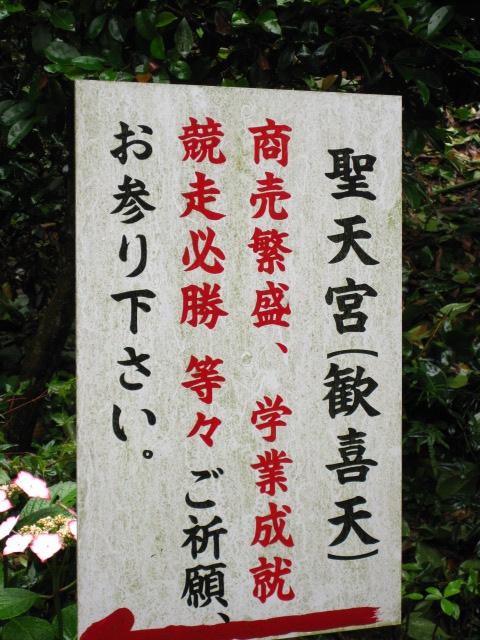 大滝山 16