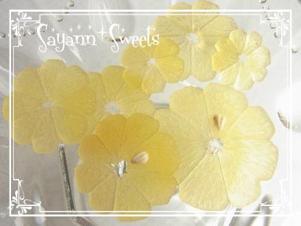 レモン2011082
