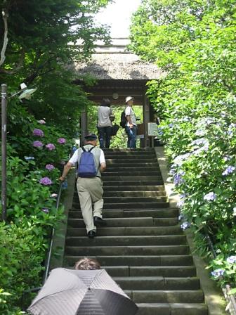 北鎌倉3642