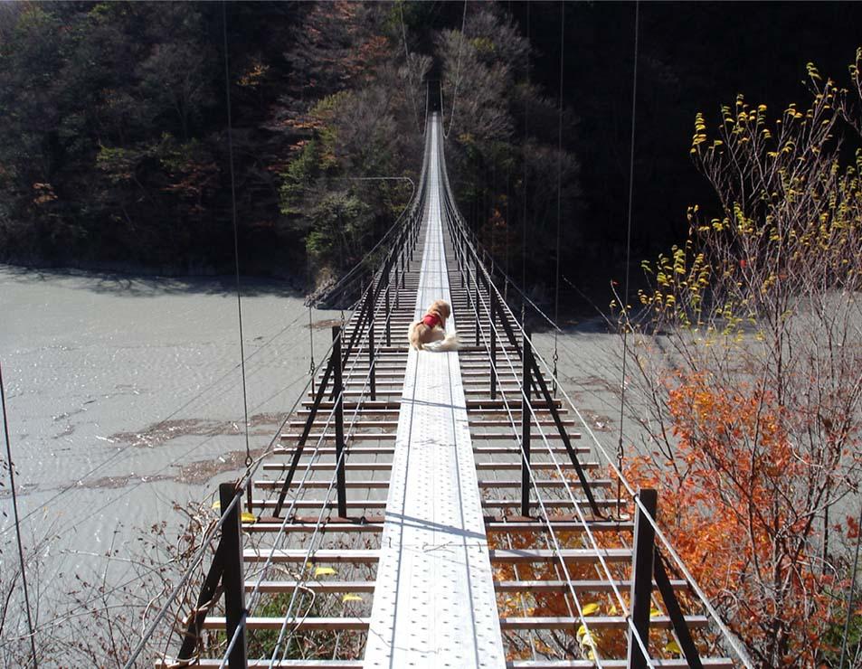 畑薙大吊橋⑩