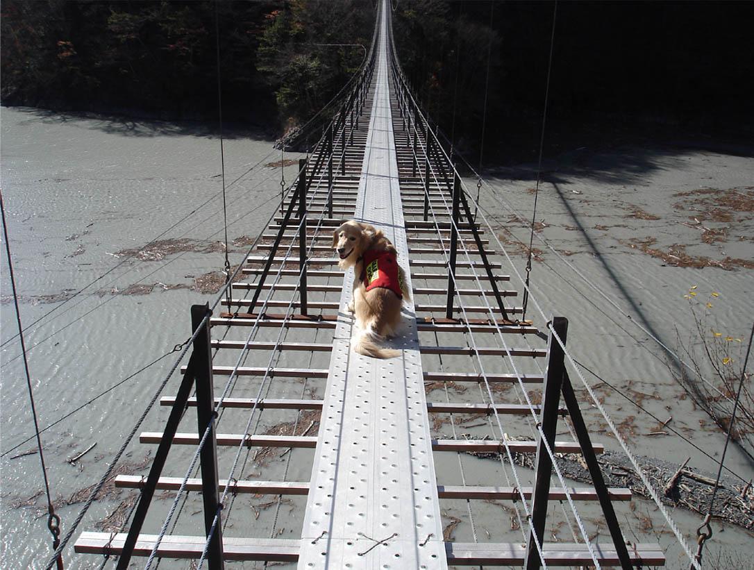 畑薙大吊橋⑪