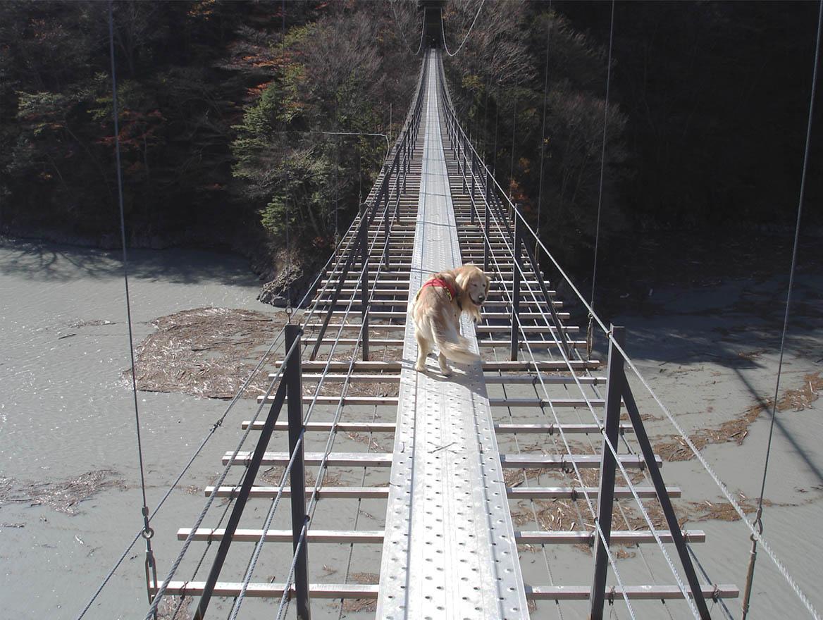 畑薙大吊橋⑬