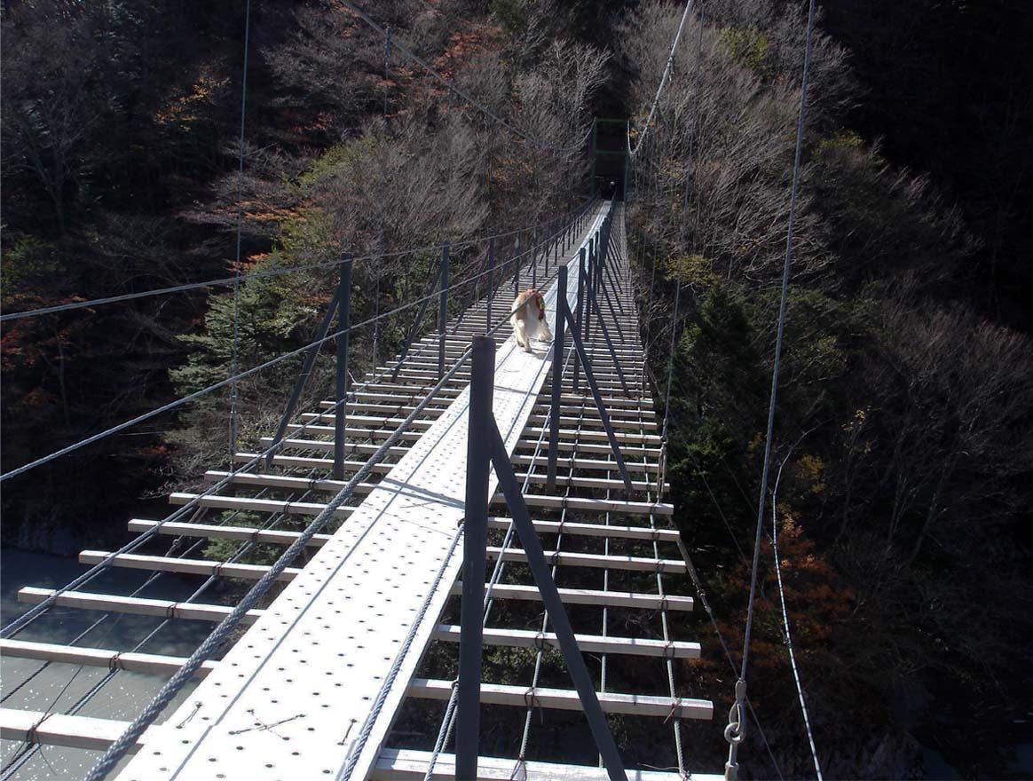 畑薙大吊橋⑮
