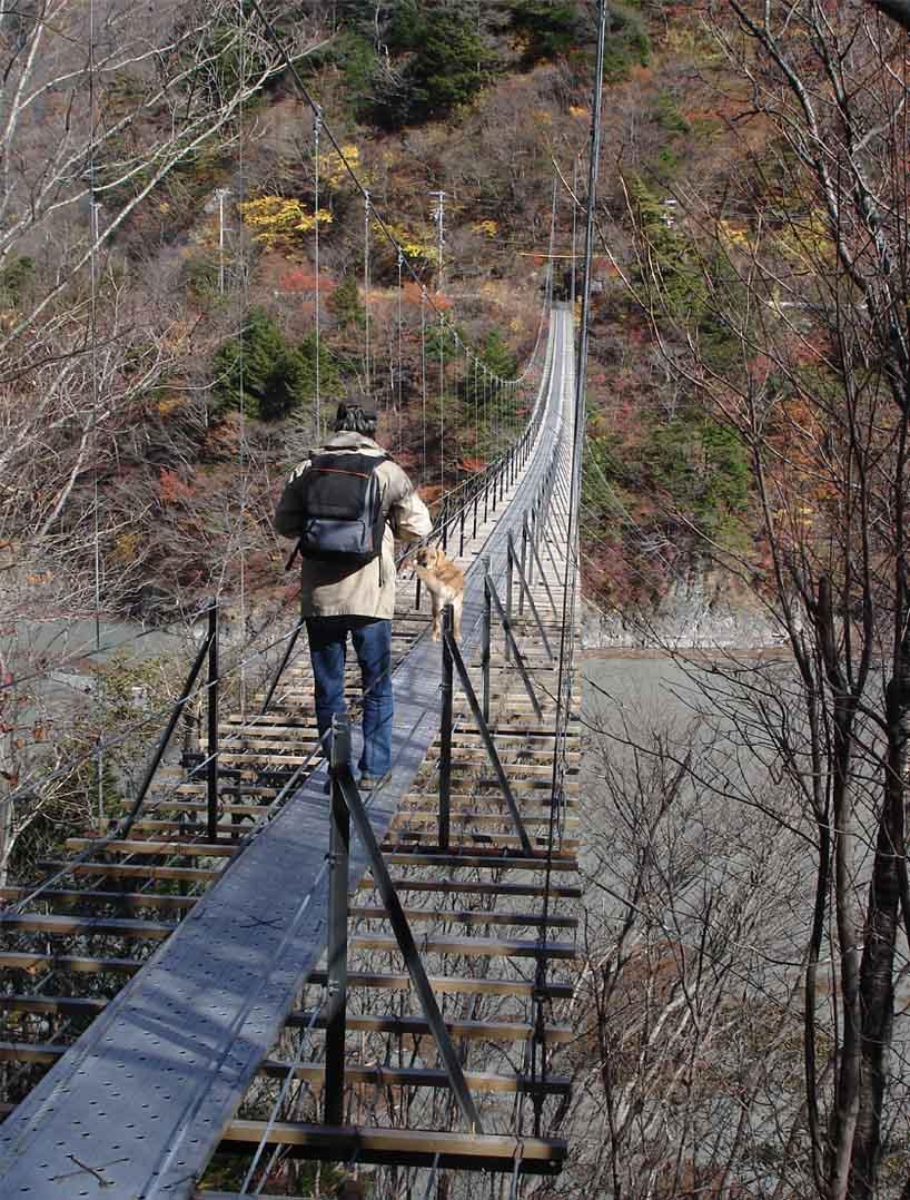 畑薙大吊橋⑲