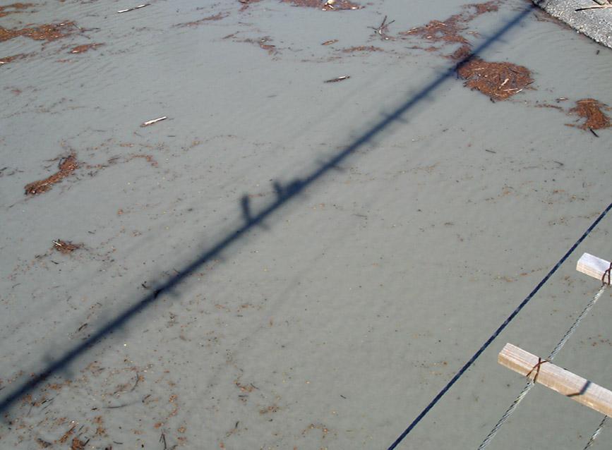 畑薙大吊橋25 湖面に写る姿