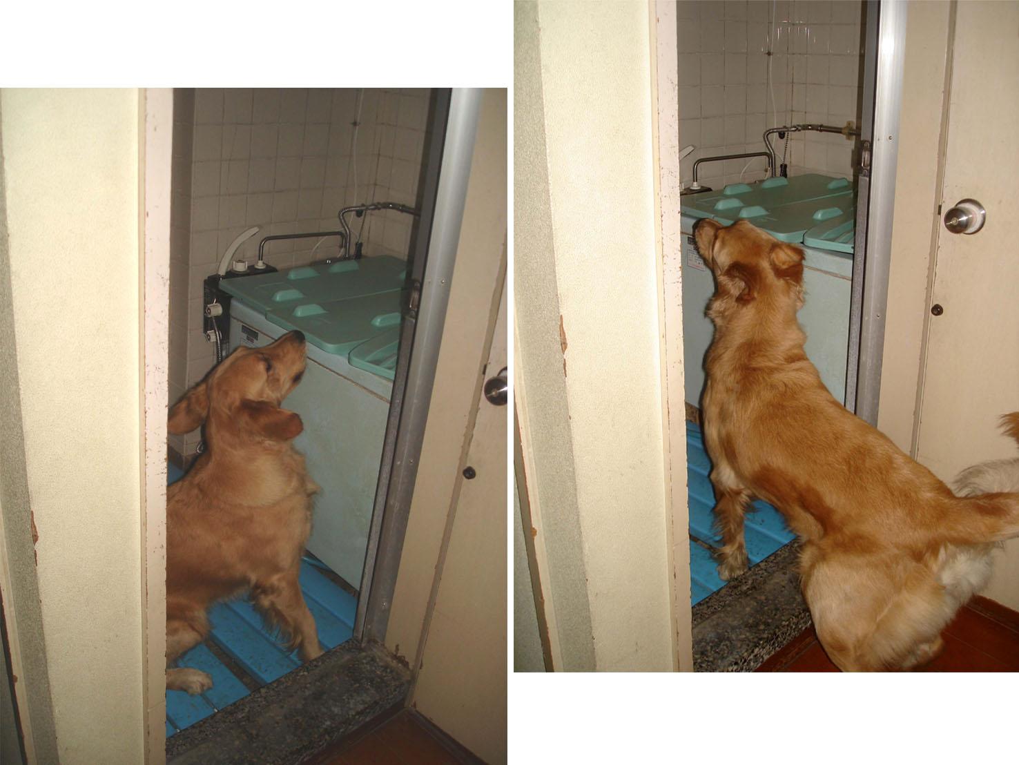 ⑫風呂場に反応し、浴槽に反応(GRM)