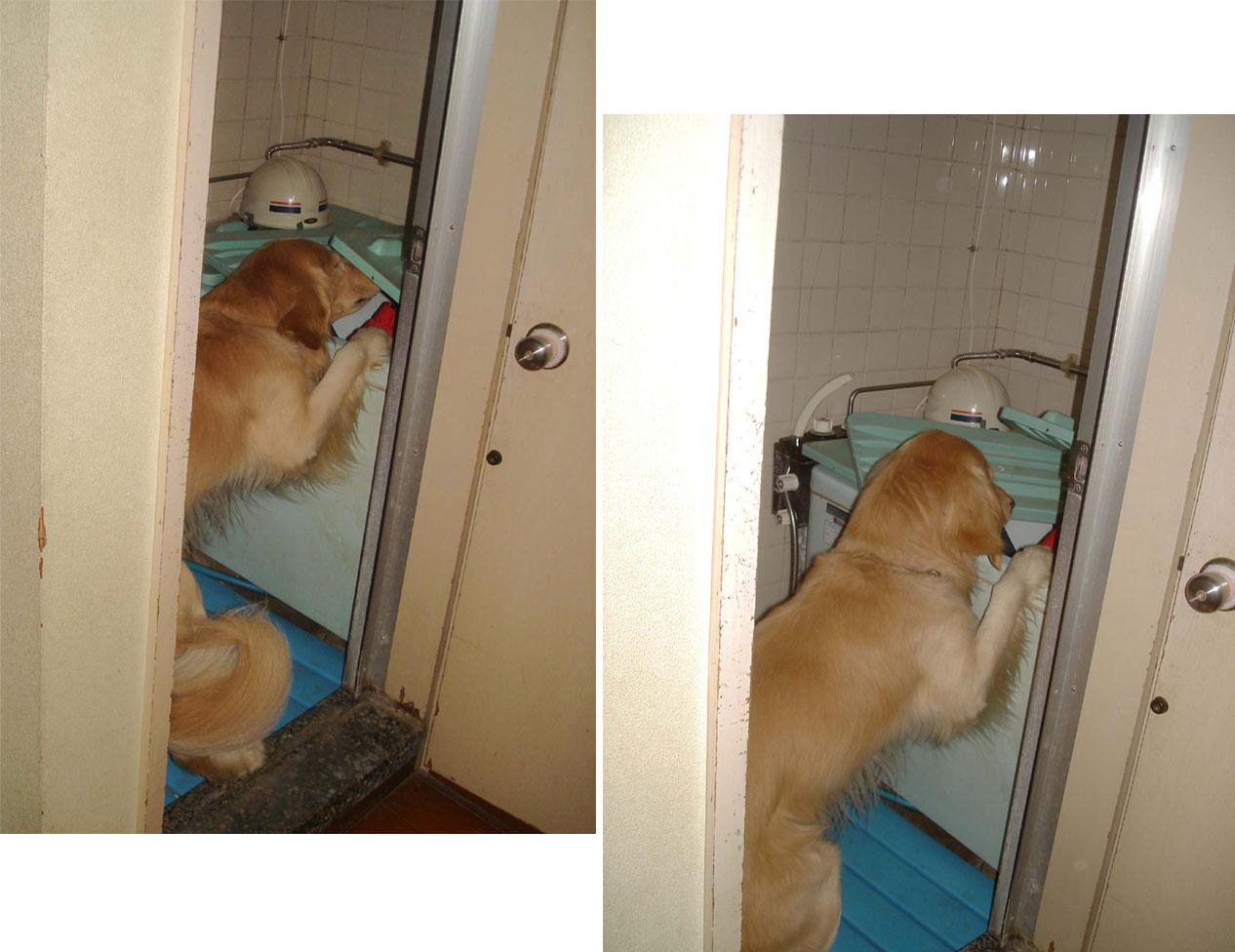 ⑮チャンスの室内③浴槽