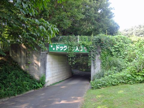 entrance1108.jpg