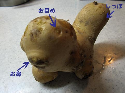 footanpotato2.jpg