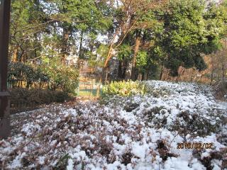 10202+雪の日1?+001_convert_20100202230212