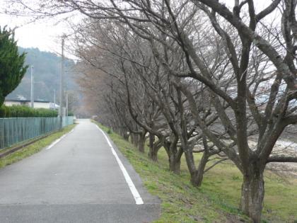 201003ライトアップ配線_003