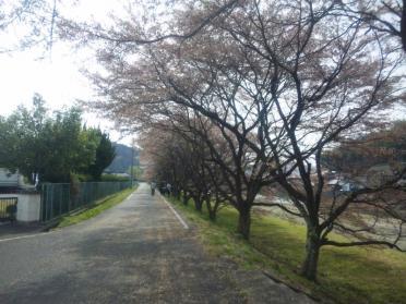 haisen_tesshu_20100418_004.jpg