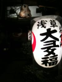 otahuku_convert_20100123113958.jpg