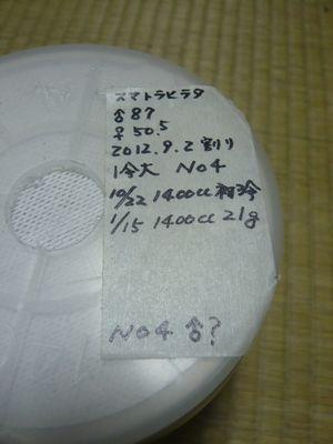 スマトラヒラタ菌糸瓶