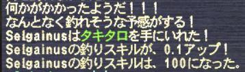 20131118_001.jpg