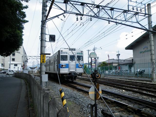 DSCF4414.jpg