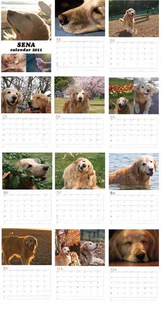 セナカレンダー