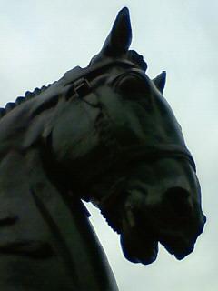20091127_4