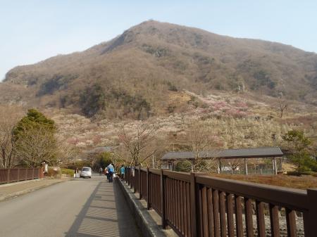 makuyama.jpg